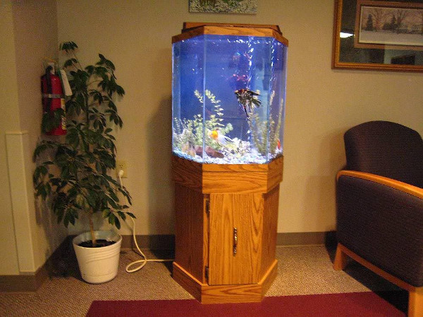 Octagonal fish tank with a wood stand